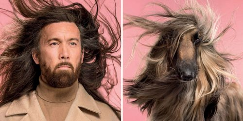 Dogs Resembling Looks of Their Owners – Portraits by Gerrard Gethings