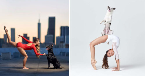 """""""DANCERS & DOGS"""" – the Sweetest Photo-Book Ever!"""