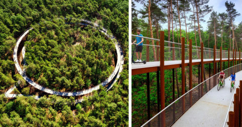 Forest Canopy Bike Ride Through Giant Spiral Path in Belgium